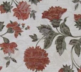 218 Tulipa
